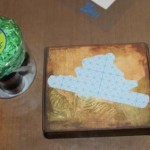 Step 5 - The silhouette of the Red-Eyed Tree Frog adhered to the box lid