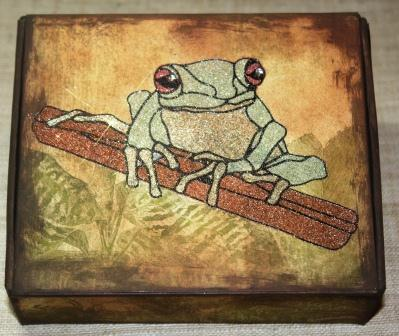 Red-Eyed Tree Frog Box using Mica D'Lights from USArtQuest