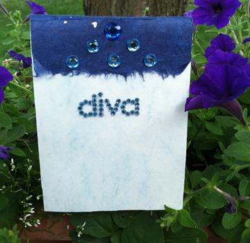 Diva Booklet