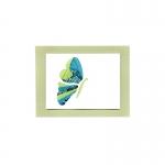 profile butterfly